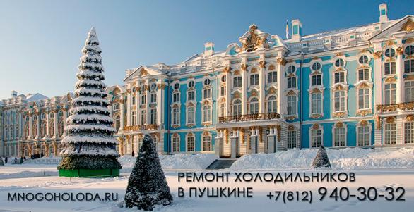 Ремонт холодильников в Пушкине
